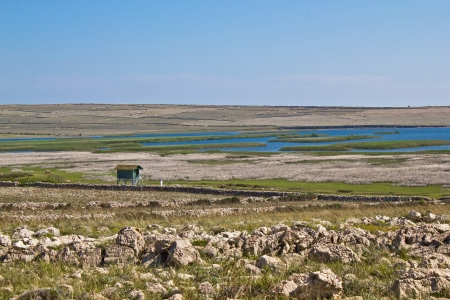 hunters tower: Ornithological reserve on Pag island with watching tower, Croatia, Dalmatia