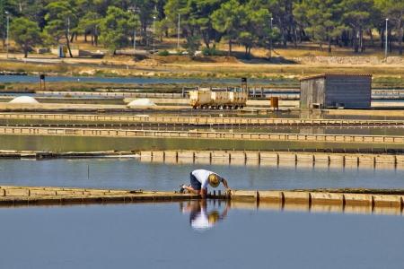 desalination: Salt production plant in Nin, Dalmatia, Croatia