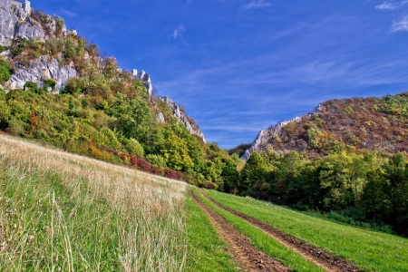kalnik: Mountain nature - tractor track to canyon, autumn on Kalnik mountain, Prigorje, Croatia Stock Photo