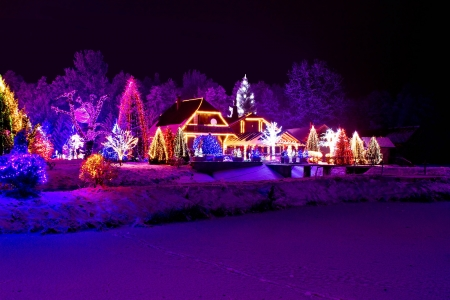Christmas fantasy - park, forest, pine tree   lodge in xmas lights