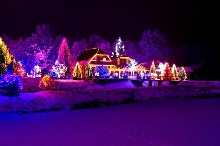 illumination: Christmas Fantasy - parque, bosque, �rbol de pino lodge en las luces de Navidad