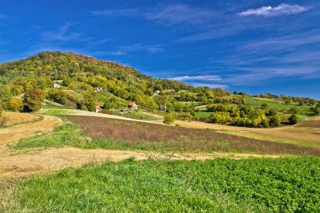 Beautiful green hill with vineyard cottages, Kalnik mountain, Prigorje, Croatia Stock Photo - 16514299