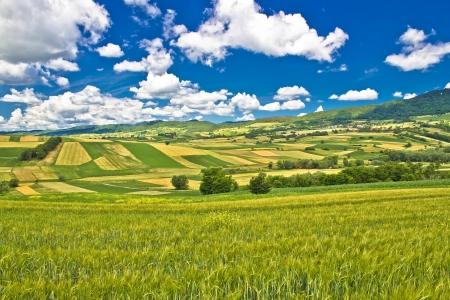 Pure green nature of Croatia under blue sky, Kalnik mountain, Croatia