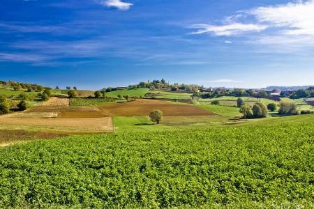 kalnik: Beautiful green nature under blue sky, Prigorje region of Croatia Stock Photo