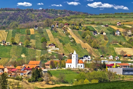kalnik: Idyllic nature of Prigorje region, village Visoko on Kalnik mountain hill, with traditional winemaking cottages