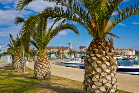 Dalmatian town of Pakostane palm tree waterfront walkway, Dalmatia, Croatia