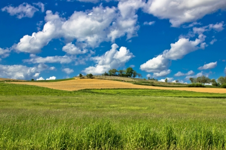 Green nature sceenery under blue sky, pictoresque landscapes of Croatia photo