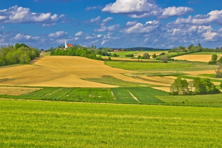Idyllic village on green hill, Prigorje region, Croatia