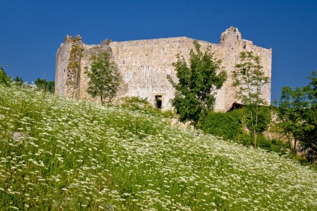 Slunj old fortress ruin in green nature, Croatia photo
