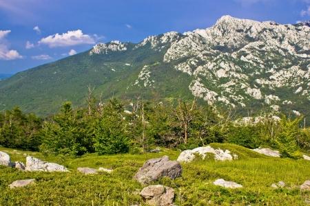 Crnopac peak nature of Velebit mountain, Dalmatia, Croatia photo