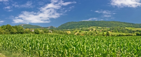 kalnik: Green agriculture fields panoramic view, Kalnik mountain, Croatia Stock Photo