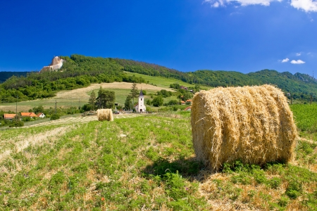 kalnik: Green landscape, field and church, Kalnik mountain, Croatia