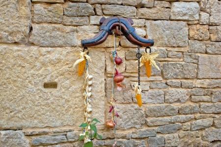 horse collar: Traditional Dalmatian ornament on stone wall - corn, onion, garlic, horse collar