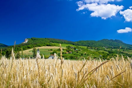 kalnik: Idyllic agricultural mountain landscape of Croatia, Kalnik mountain region Stock Photo