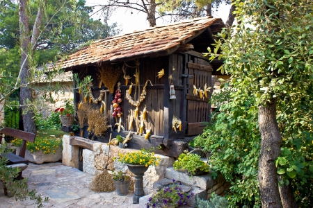 Traditional wooden corn drier store with ornaments, Croatia