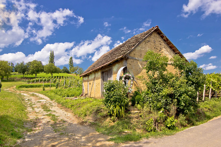 Vineyards and mud made cottage in Prigorje region, Croatia Stock Photo