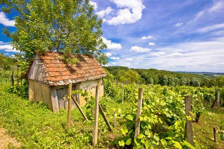 Mud cottage in hill vineyard, Prigorje region, Croatia