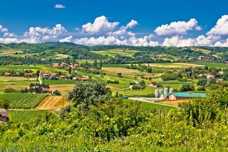Countryside farmland green scenery in Croatia, region of Prigorje