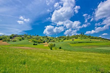 Idyllic africultural green landscape of Croatia, region of Prigorje Stock Photo