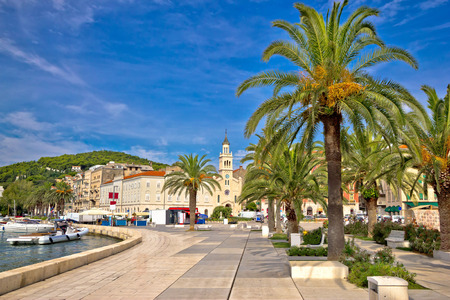 City of Split palm waterfront view, Dalmatia, Croatia
