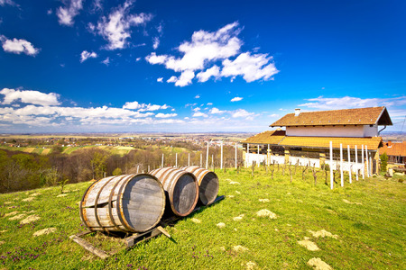 kalnik: Vineyard hill landscape and wine barrels view, Ludbreg, Croatia