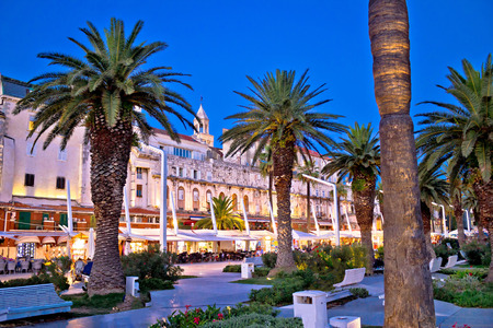 Split Riva waterfront palm walkway evening view, Dalmatia, Croatia Standard-Bild