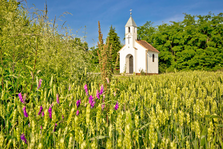 kalnik: Catholic chapel in rural agricultural landscape, hay field in Cepidlak village of Croatia