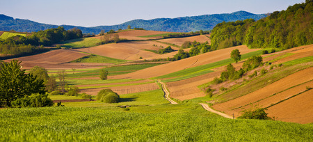 kalnik: Idyllic agricultural landscape panoramic view, northern Croatia Stock Photo