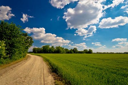Podravina region field and road, Drava, Croatia