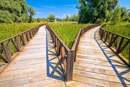 Kopacki Rit marshes nature park wooden boardwalk view, Baranja region of Croatia