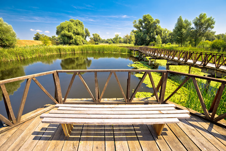 Kopacki Rit marshes nature park bird observation deck and wooden boardwalk, Baranja region of Croatia