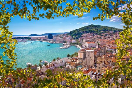 Vista aérea de la bahía dividida a través de las hojas del árbol lazer, Dalmacia, Croacia