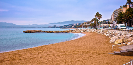 Cannes sand beach and palm waterfront panoramic view, famous tourist destination of French riviera, Alpes Maritimes region of France