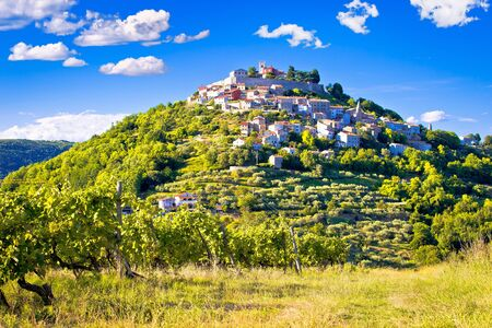 Town of Motovun on picturesque vineyards hill, Istria region of Croatia