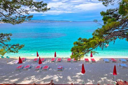 Idyllic pine trees and pebble beach in Baska Voda view, Makarska riviera in Dalmatia, Croatia