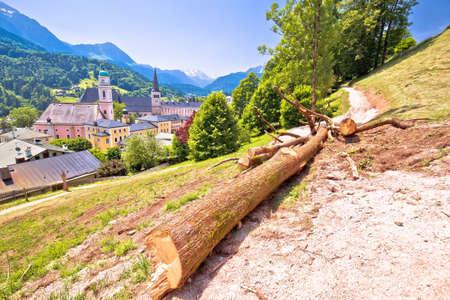 Town of Berchtesgaden hillside path, chopped tree in Alpine landscape, Bavaria region of Germany