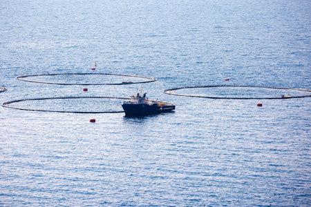 Fish farm on open sea view, Dalmatia archipelago of Croatia