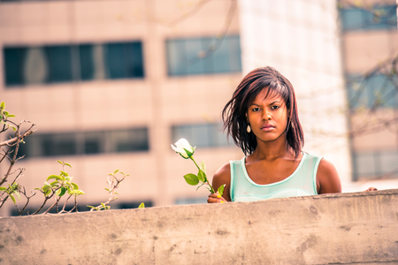 Love Story. Holding white rose, hair floating in wind, young African American woman standing behind top of wall, missing you, sad, thinking, passionately looking forward.