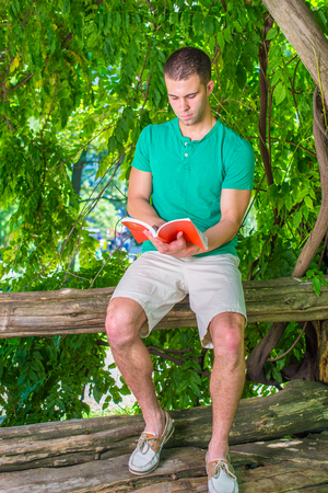 Young American man reading red book outside, wearing green short sleeve Henley shirt, light yellow shorts, leather casual shoes, sitting on tree trunk in woods at Central Park, New York, in summer. Stock Photo