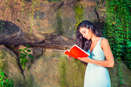 Pretty Lady Reading Outside. Dressing in a light blue dress, a young college student with long curly hair is standing by rocky wall with long green leaves, looking down, reading a red book. Stock Photo