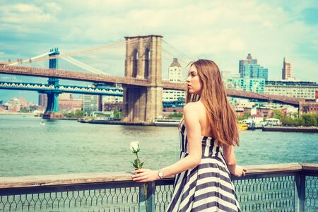 Young Woman missing you, waiting for you, holding white rose, wearing black, white striped dress, standing by fence at harbor in New York, looking away. Manhattan, Brooklyn bridges on background.