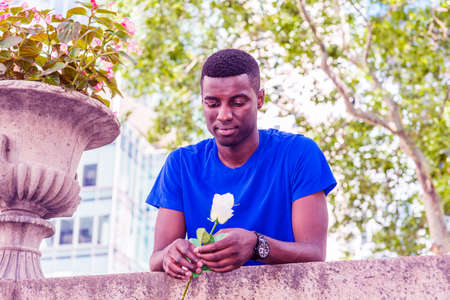 Young African American Man missing you in New York City, wearing blue short sleeve T shirt, wristwatch, standing, bending forward on top of wall, holding white rose, looking down, waiting, thinking. 版權商用圖片