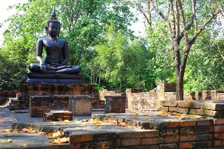 esteemed: Black Buddha.