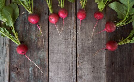 Fresh radish with bots rests on old wooden boards. High quality photo