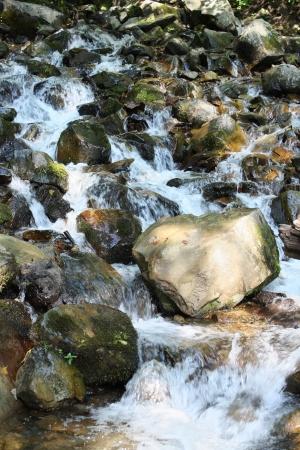 Mountain waterfall  Sochi, not far from Krasnaya Polyana  photo