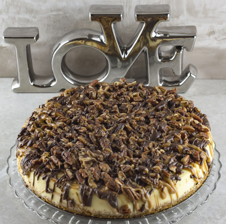 Close up view of a tutle cheesecake on glass platter with the word