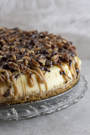Turtle cheesecake.  Portrait cropped.  Right side of cake close up.
