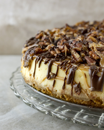 Turtle cheesecake.  Portrait cropped.  Left side of cake close up.