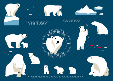 Vector set of polar bears. For Identity style or advertising Illustration