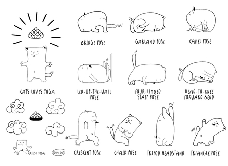 nirvana: Yoga Cat, vector funny set of basic poses, lineart, white backdrop Illustration